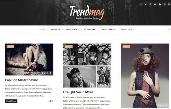 Trendmag Responsive Blogger Template hindi me help