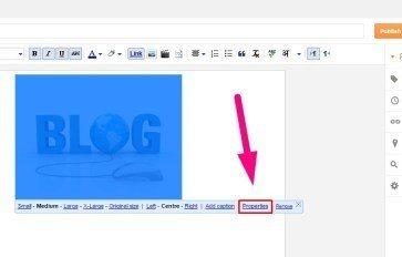 on-page-alt-tag