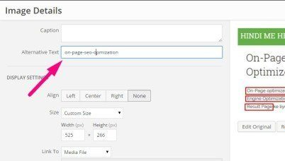 on-page-img-file-tag-title-text-wordpress