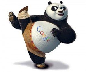 copy karne par google panda site ko search se hada deta hai